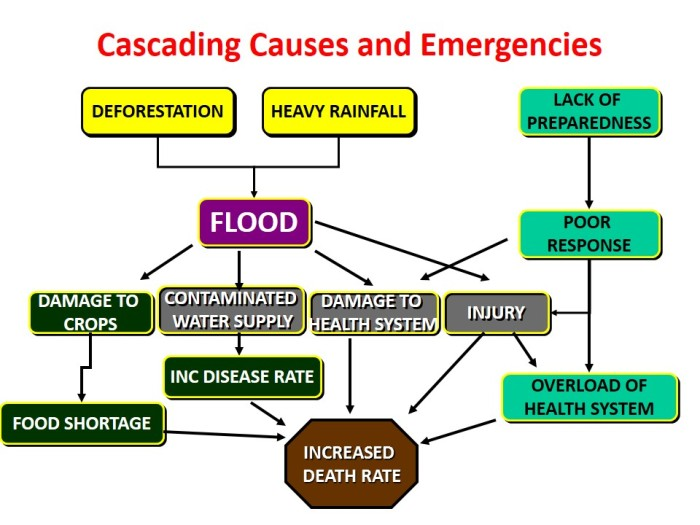 Cascading Disaster Flow chart